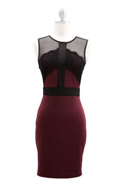 Knee Length Lace and Mesh Backless Dress-Burgundy & Black